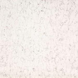 White Arabesque Tabla